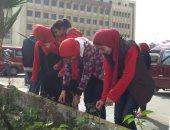 محافظ الإسكندرية يشيد بمبادرة شباب حى العجمى فى تجميل شوارع الحى
