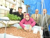 صور.. افتتاح أصغر وحدة استزراع سمكى ومشروم بمدرسة بالإسكندرية