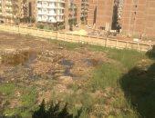 شكوى من انتشار القمامة ومياه الصرف بشارع على الجمل فى كفر الزيات