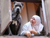 """مصور """"السيدة والكلب"""" لست الحسن: أعيش فى مصر منذ 20 عاما واللقطة طريفة.. فيديو"""