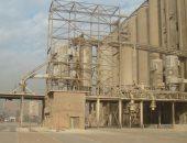 التموين: ارتفاع معدلات توريد القمح المحلى إلى 2.8 مليون طن حتى الآن