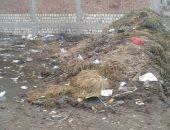 قارئ يشكو من طفح مياه المجارى والقمامة فى قرية ميت الليث بالغربية