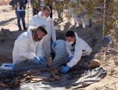 صور.. العثور على مقبرة سرية داخل فيلا بالمكسيك والشرطة تستخرج الرفات