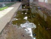 صور.. قارئ يشكو من انتشار مياه الصرف الصحى بالمجاورة 5 فى 6 أكتوبر