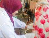 """""""الزراعة"""" متابعة ثلاجات عرض اللحوم وتكثيف الحملات لمنع إقامة شوادر عشوائية"""
