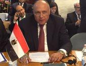 وزير الخارجية: الرئيس السيسى لديه رؤى واضحة إزاء التحديات التى تواجه مصر