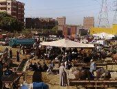 الزراعة تشن حملات للتأكد من إجراءات الوقاية من كورونا فى أسواق الماشية