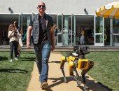 """صور.. رئيس أمازون يتنزه بصحبة كلب """"روبوت"""""""