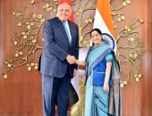 صور.. وزير الخارجية يبحث مع نظيرته الهندية التعاون فى مكافحة الإرهاب