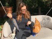 """فيديو.. جينيفر جارنر تنعى دجاجتها بقلب """"مكسور"""" على """"انستجرام"""""""