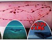 التعليم تحذر الطلاب من لعبة الحوت الأزرق وتطالب بتفعيل الأنشطة