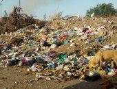شكوى من انتشار القمامة والافتقار للخدمات بمنطقة المحمودية فى القاهرة