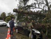 صور.. عاصفة تضرب نيوزيلندا وتترك الآلاف بدون كهرباء