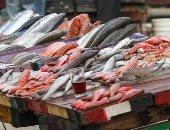 أسعار الأسماك اليوم.. البورى يبدأ بـ32 جنيها والبلطى الأسوانى من 15جنيها