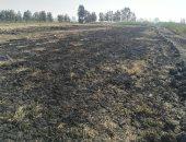 صور.. مصنع لإعادة تدوير القمامة يتسبب فى حريق الأراضى المجاورة بكفر الشيخ