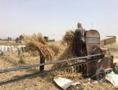 مصرع شاب أثناء تشغيله ماكينة حصاد القمح بمركز كوم حمادة فى البحيرة