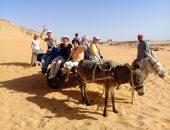 """شهامة المصريين.. عامل يوفر """"كارو"""" لمساعدة الأجانب فى التنقل بين معابد النوبة"""