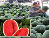 """""""شعبة الخضروات"""": البطيخ سيغرق السوق بعد العيد وأسعاره بين 10 – 25 جنيها"""