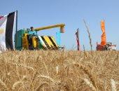 """""""الزراعة"""": حصاد 3 ملايين و150 ألف فدان قمح حتى الآن"""