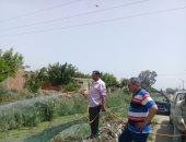 صور.. حملة لمكافحة الحشرات الطائرة ورصف الشوارع بكفر الشيخ