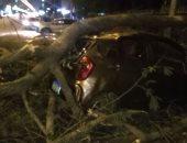 صور.. سقوط شجرة على سيارة ملاكى دون إصابات فى شارع التحرير بالدقى