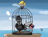 حال الدنيا.. إيران فى قفص العزلة الأمريكية.. كاريكاتير