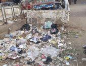شكوى من انتشار القمامة بشارع على القدسى فى عين شمس