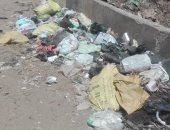 قارئ يشكو تراكم القمامة بقرية شها فى الدقهلية
