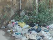 سكان المجاورة 3 بالحى 11 فى مدينة أكتوبر يشكون كسر ماسورة مياة وتراكم القمامة