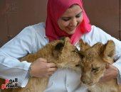 سكر وليلى يبدأن حياتهما الجديدة فى بيت السباع بحديقة الحيوان