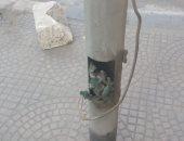 صور.. قارئ يحذر من كابلات عارية بأعمدة الكهرباء أسفل كوبرى أكتوبر بالعجوزة