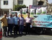 توفير تقاوى الأرز لمنطقة سهل الطينة شرق بورسعيد