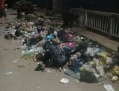 صور.. قارئ يناشد توفير سيارات لجمع القمامة فى قرية ميت عافية بالمنوفية