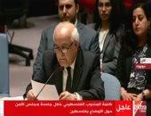 مندوب فلسطين بالأمم المتحدة: تعديل واشنطن محاولة فاشلة ولا يخدع أحدا