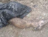 انتشال جثة غريق من مياه النيل بمنطقة امبابة ونقلها للمستشفى