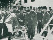 """حكايات الأمن والقضاء.. قصة أول """"كلب بوليسى"""" ساهم فى حل 117 قضية"""