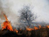 إخلاء آلاف المنازل وإغلاق غابة وطنية بسبب حرائق الغابات فى كولورادو