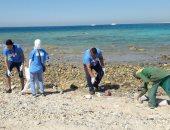 صور.. انطلاق مبادرة مؤسسة شباب بتحب بمصر لتنظيف شواطئ الغردقة من المخلفات