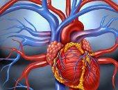 خبراء صحة:  ازدياد معدل أمراض القلب والأوعية الدموية فى تنزانيا