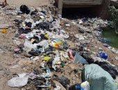 قارئ يشكو تراكم القمامة بقرية برج مغيزل فى كفر الشيخ