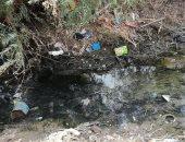 قارئ يطالب بتطهير ترعة شابوره فى محافظة قنا لتهسيل وصول المياه للأراضى