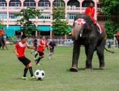 """كأس العالم للأفيال.. مباراة كرة قدم بين الفيلة والطلاب فى تايلاند """"صور"""""""