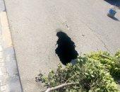 هبوط أرضى فى شارع كورنيش النيل بدمياط ومطالب بإصلاحه قبل وقوع كارثة