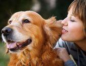 دراسة مجرية: الكلاب تساعد فى بحث أسباب إصابة البشر بالسمنة مستقبلا