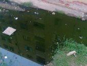 أهالى قرية عمر شاهين بالجيزة يشكون من انتشار مياه الصرف الصحى