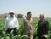 الزراعة تدعو الفائزين بالمزاد العلنى لاستلام أراضيهم فى مشروع تنمية سيناء