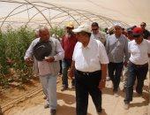الزراعة: منظومة جديدة لصادرات الخضر والفاكهة على 8 محاصيل بالموسم الجديد
