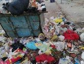 انتشار القمامة بشارع أحمد عصمت فى عين شمس بالقاهرة