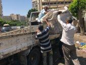 حملات لمطاردة النباشين والفريزة شرق الإسكندرية