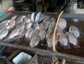 ضبط كمية من الأسماك الغير صالحة للاستخدام الآدمى بثلاجه فى العبور
